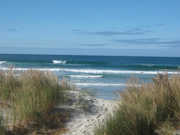 Otago Peninsular 025a