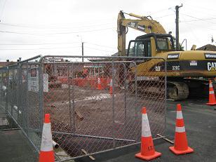 Christchurch Spring 2012 003