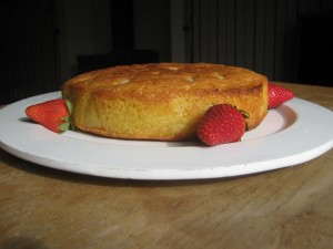 Holy Grail aka Orange Cake 002a