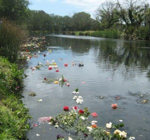 The River of Flowers, at Medway Street