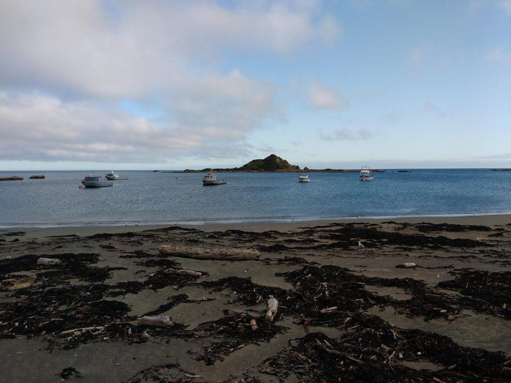 island-bay_boats