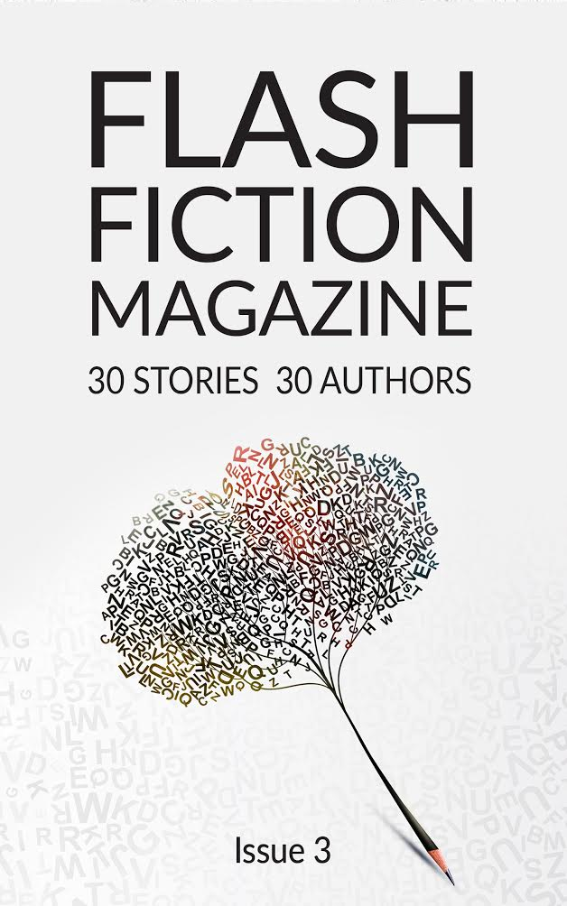 13 Flash Fiction Magazine 3 Cover